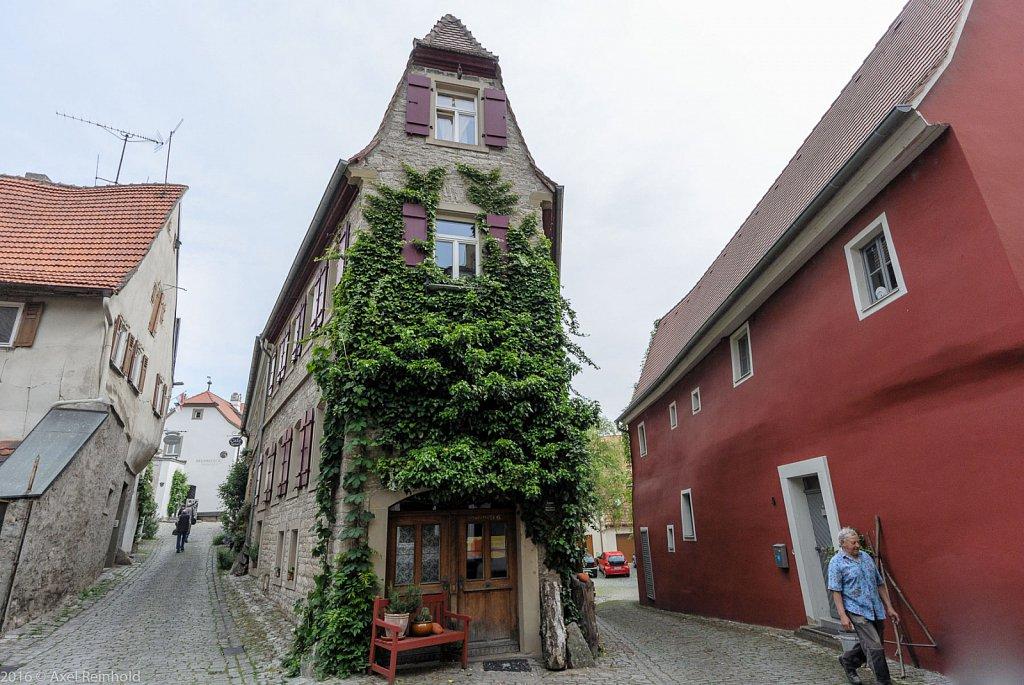 Sulzfeld 16 | V1